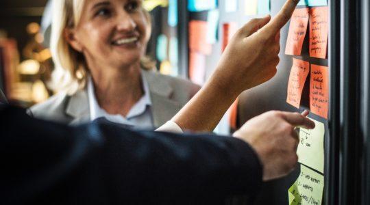 Mentorat Bpifrance Le Hub et Roche France : un partenariat réussi