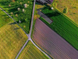 A l'heure où Bpifrance prépare un grand plan DeepTech pour le compte de l'Etat, retrouvez, dans cet article, les projets de rupture FoodTech et AgriTech accompagnés par la direction de l'innovation de Bpifrance ces 5 dernières années.